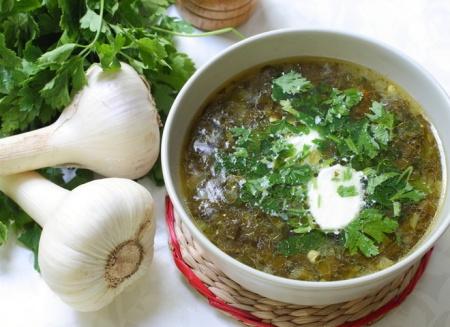 Рецепт свежего зеленого борща с перепелиными яйцами