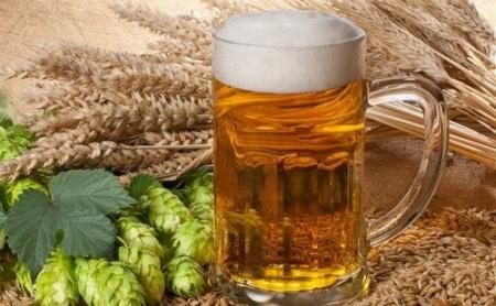 Бизнес на создании алкогольных напитков